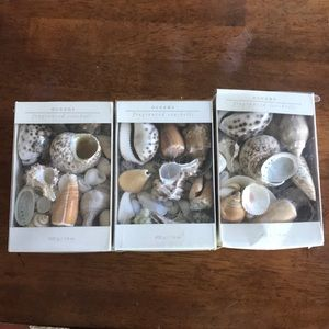 Pier 1 - 3 packs polished & natural sea shells NEW